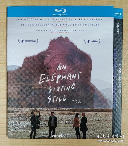 電影  大象席地而坐 2018中國  家庭劇