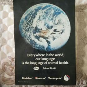 Everywhere in the world,our langguage is the langguage of animal health