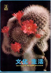 文化与生活丛刊.1980年1、2、3期总第5、6、7辑.3册合售