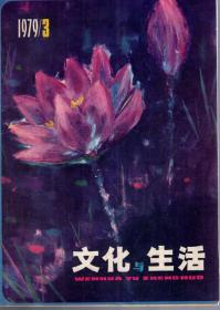 文化与生活丛刊.1979年3、4.总第3、4辑.2册合售