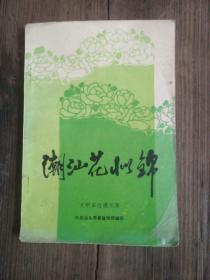 潮汕花似锦:文明单位通讯集