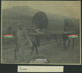民国时期山东烟台双马抬轿交通工具民俗老照片,照片尺寸18.1X14.5厘米