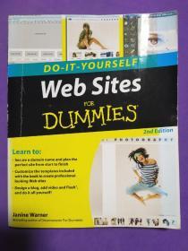Web Sites Do-it-Yourself For Dummies  傻瓜书-自建网站