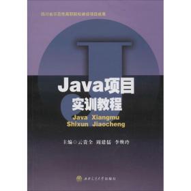 Java项目实训教程
