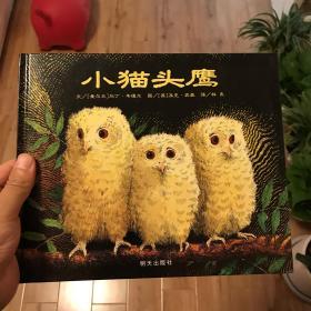 小猫头鹰:信谊世界精选图画书