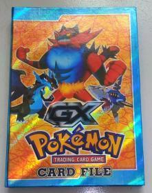 Card File——Pokemon Trading Card Game 内含普卡 非闪卡
