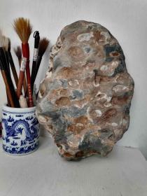 """一块多孔奇石,以毛泽东诗词名句""""弹洞前村壁""""简化名《弹洞壁》。包运费(邮政包裹)。包运费(邮政包裹)。"""