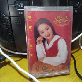 【磁带】杨钰莹——等你一万年(未拆)