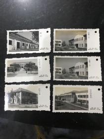 五六十年代安徽省蕪湖市第一中學書簽式老照片 5張一套另贈送一張重復的共6張 非常少見孤品