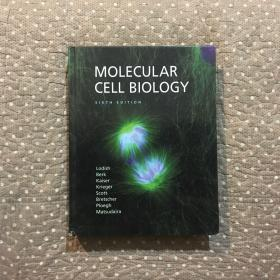 (英文原版)Molecular Cell Biology (SIXTH EDITION)
