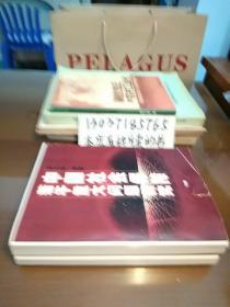 中国社会保障若干重大问题研究(全二册,复印本)