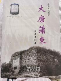 大唐蒲东:长篇文化散文