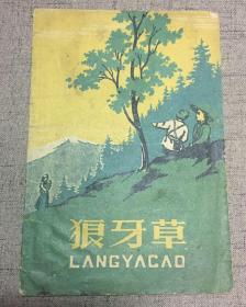 狼牙草  1958