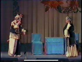 京剧 汾河湾 录像带转录DVD 王琴生舞台实况录像 清晰度一般 内部资料 老谭派