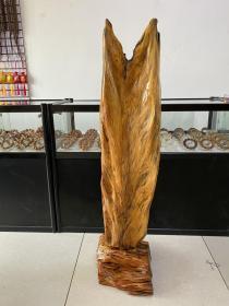 北沉香 琥珀木 松明子 千秋大业 根艺 工艺品  立件 自然形树叶摆件 长30厘米 宽37厘米 高127厘米 重42全新 斤  新出作品。