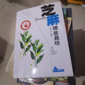 芝麻增效栽培