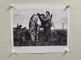 徐匡先生黑白木刻版画《草地诗篇》宣传画一张