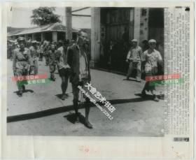 1953年广东广州土地改革运动中被捆绑押送,即将被处决的地主照片,美联社新闻传真照片一张