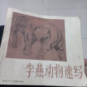 李燕动物速写