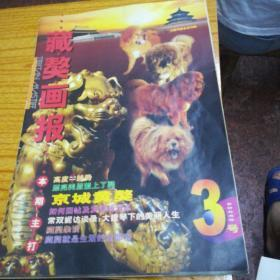 藏獒畫報(照片一張)