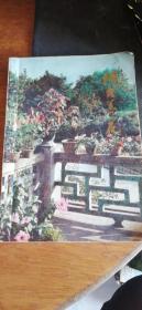《阳台养花》刘子善题名!1983年1版1印《赠送怎样栽培与选购君子兰》