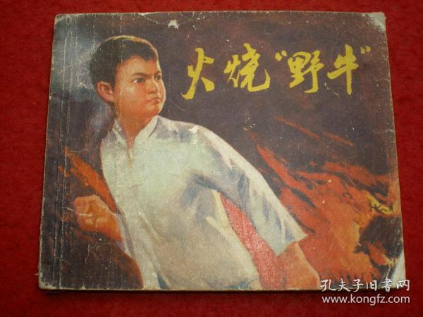 """连环画《火烧""""野牛""""》衢县美术创作组绘,浙江人民出版社,一版一印="""
