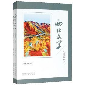 西北文学(小说卷套装上下册)