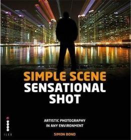 Simple Scene Sensational Shot : Artistic Photography in Any Environment场景摄影:随时随地的艺术摄影,英文原版
