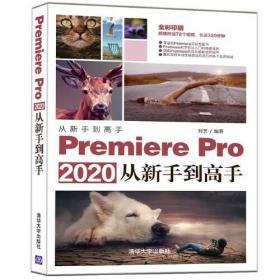 Premiere Pro 2020从新手到高手