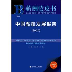 薪酬蓝皮书:中国薪酬发展报告(2020)