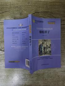 初中生语文新课标必读 名师精解 骆驼祥子