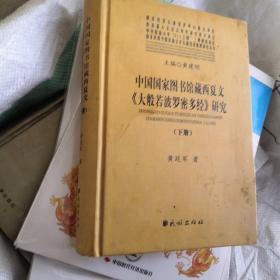 中国国家图书馆藏西夏文《大般若波罗密多经》研究(现有单本下册)