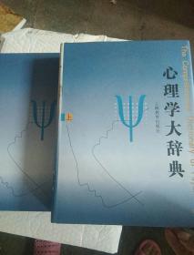 心理学大辞典(上下)