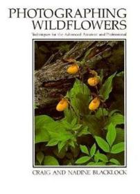 Photographing Wildflowers: Techniques for the Advanced Amateur and Professional (Natural World)-野花摄影:高级业余和专业技术(自然世界)