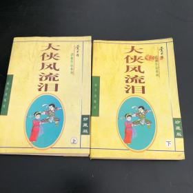 大侠风流泪(上下) 共2册 合售