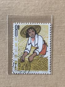 """特64《人民公社女社员》盖销散邮票6-2""""粮食丰收"""""""