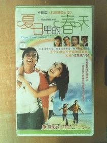夏日里的春天  VCD    【电视剧-----马苏  王林】20VCD