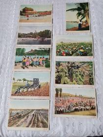 明信片军邮抗美援朝中国人民赴朝鲜慰问团赠,全十张少8