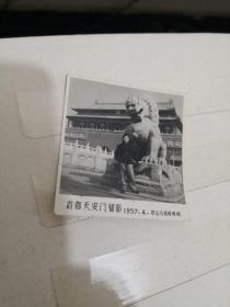 老照片:首都天安门留影1957.4  中山公园照相部  品如图  编号  分1号册