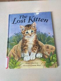 The lost kitten:迷路的小猫