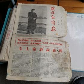 湖北红卫报1966年12月26日