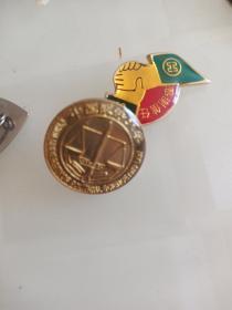 大学徽章,中国政法大学