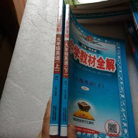 中学教材全解 九年级英语下 人教版 (上下册)