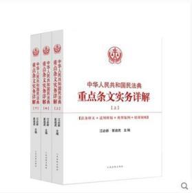 2020中华人民共和国民法典重点条文实务详解(上中下)三册 包邮