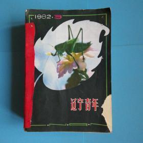 辽宁青年1982年1-24 缺1.2.4