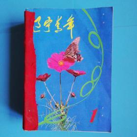 辽宁青年 1984年全年1-24期 合订