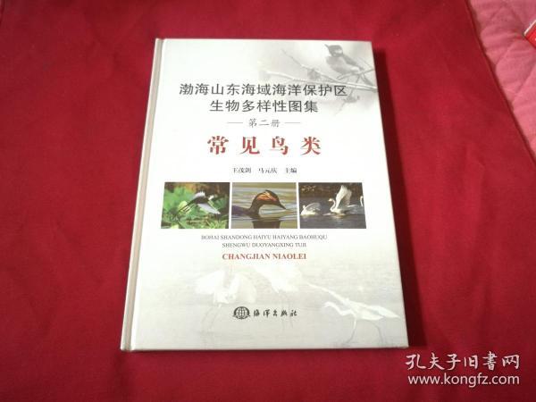 渤海山东海域海洋保护区生物多样性图集——常见鸟类(正版品佳未阅覆膜)