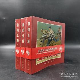 血肉长城(三册全)——纪念抗日战争胜利60周年