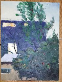 手绘布面油画:无款20190823-20(风景 40x30 已绷框)背面有签名