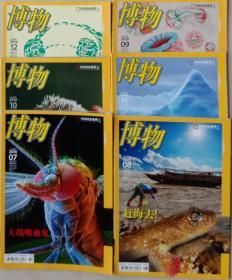 杂志 博物 2016:7,8,9,10,11,12(6册合售)